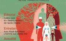 Cliniques transculturelles  3